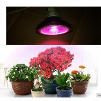 Quality cob led grow light E27 par 20W/30W/40W  full spectrum 380-840nm  Plant growth lamp Indoor planting flowers and plants gr for sale