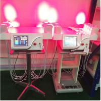 Wholesale Vertical Cold Laser Lipo Machine / Laser Weight Loss Machine Higher Safe Standard from china suppliers