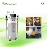 Wholesale Non-invasive Weight Loss Cryolipolysis slimming beauty machine for whole body from china suppliers