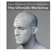 Wholesale Adobe Photoshop CS6 Design Standard software for Windows from china suppliers