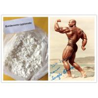 Wholesale 106505 - 90 - 2 Muscle Bodybuilding Steroid Boldenone Steroids Boldenone Cypionate from china suppliers