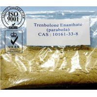 Wholesale Muscle Gaining Trenbolone Steroids Hormone Trenbolone Enanthate Powder CAS 10161-33-8 from china suppliers