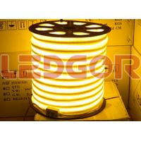 warm white led neon flex 220v 120v 24v 12v