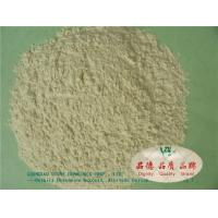Wholesale Green additives odorless Cationic guar gum Little yellow powder environmental from china suppliers