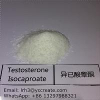 Wholesale Testosterone Isocaproate Testosterone Anabolic Steroid CAS 15262-86-9 from china suppliers