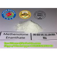 Wholesale Anabolic Muscle Building Steroids Methenolone Enanthate / Primobolan Enanthate for Bodybuilding from china suppliers