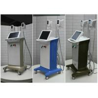 Quality Factory Freezing Fat Cryolipolysis Beauty Equip With 2 Large Cryo Lipo Handles for sale
