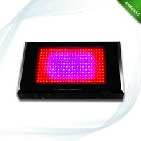 Wholesale 600W LED Grow lighting in hydroponics  from china suppliers