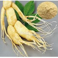 Wholesale Ginseng Extract/Ginseng Powder/Panax Ginseng Leaf Extract/ Ginseng Leaf Extract/ Panax Ginseng Leaf Extract from china suppliers