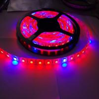 Wholesale 5:1 5 Red 1 Blue Full spectrum waterproof 60led/m 5050 Grow LED Flexible Strip Light from china suppliers