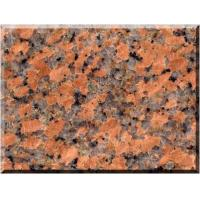 Wholesale Granite G562 Maple Red,Red Color,Quite Price Advantage,Made into Granite Tile,Slab,Countertop from china suppliers