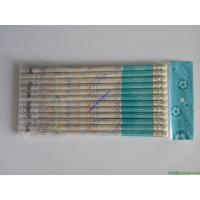 Quality 12 Pcs Artist Middle Soft Charcoal Sketching Pencils For Sketch Drawing for sale