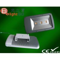 Wholesale Exterior Waterproof LED Flood Lights , LED Landscape Lighting from china suppliers