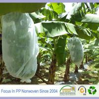 Wholesale Good quality nonwoven for fruit protection bag from china suppliers