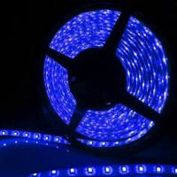 Wholesale 12V 60W Flexible Ribbon Lighting Strip Blue LED Strip Light from china suppliers