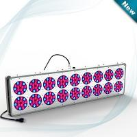 Wholesale Top quality LED light grow light 650W for tomato/potato/flower/vegetable from china suppliers
