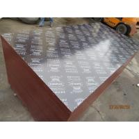 Wholesale KINGPLEX BRAND FILM FACED PLYWOOD, COMBI CORE, WBP PHENOLIC GLUE, IMPORTED BROWN FILM from china suppliers