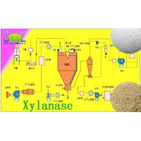 Wholesale Light Yellow Baking Food Grade Enzyme Xylanase Powder 200000u/g Szym-XY200BA from china suppliers