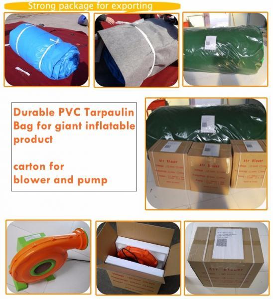 package bag & carton.jpg