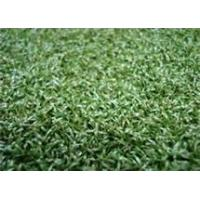 Wholesale Imitation grass lawns from china suppliers