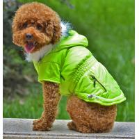 Wholesale Various design green dog clothes from china suppliers