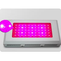 Wholesale Energy Saving 55*3w Rectangular Led Plant Growing Lights, Grow Lights Panel For Indoor from china suppliers