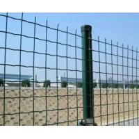 Wholesale 4mm steel Wire Mesh Fence Panels / Protective Welded Mesh Panels from china suppliers