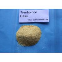 Wholesale Trenbolone Fat Loss Powders For Promoting Muscle Growth , CAS 10161-33-8 from china suppliers