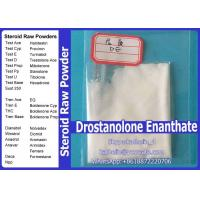Wholesale Steroid Hormone Powder Drostanolone Enanthate / Masteron Enanthate For Bodybuilding 472-61-145 from china suppliers
