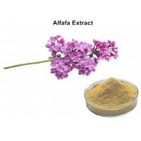 China Alfafa Plant Extract Powder 5% Flavonoids UV Lowering Blood Fat Chloresterol And Diuretic on sale