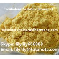 Wholesale Safe Trenbolone Steroid Trenbolone Acetate Revalor-H CAS 10161-34-9 Injection Powders from china suppliers