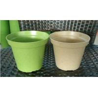 Quality biodegradable nursery, plant fiber flower pot for sale