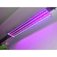 Wholesale LED Grow Light (CDL-ZHFS-44W) from china suppliers