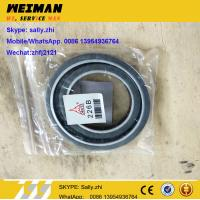 Wholesale SDLG orginal SEAL, 12188100, 13022805,  engine parts for deutz engine from china suppliers