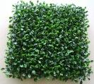 Quality Boxwood Ball Topiary for sale