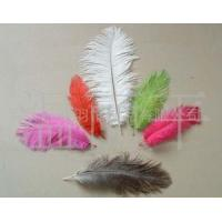 China ostrich feather, plumage, marabou, boas, strung, fringes/trims, duster on sale