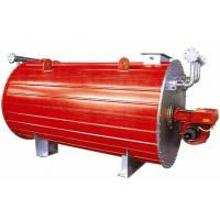 Quality Industrial Gas Fired Horizontal Thermal Oil Heating Boiler Efficiency 300kw for sale