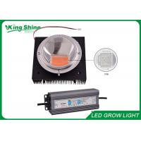 Wholesale Indoor 100 Watt DIY Led Grow Light Kits for Hydroponic and Medical Plant from china suppliers