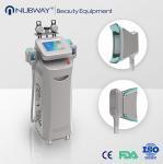 Wholesale cryolipolysis rf beauty machine,cryolipolysis vacuum slimming equipment from china suppliers