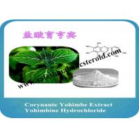 Wholesale Corynante Yohimbe Male Enhancement Powder Yohimbine Hydrochloride CAS 65-19-0 from china suppliers