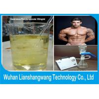 Wholesale CAS 62-90-8 Fast Muscle Gain Steroids / Nandrolone Phenylpropionate With 99.5% Purity from china suppliers