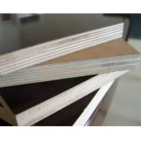 Quality Brown film face and Back, poplar core, birch core, hardwood core,Size: 1220X2440X5MM-25MM. for sale