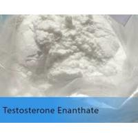 Wholesale White Testosterone Anabolic Steroid Testosterone Enanthate Test E Powder from china suppliers