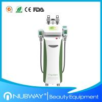 Wholesale Multifunction cryolipolysis slimming fat freezing cryolipolysis slimming machine with CE from china suppliers