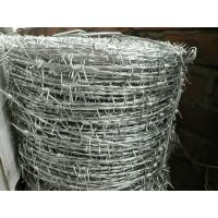Wholesale PVC Coated Prison Galvanized Barbed Wire Fencing , Metal Safety Fence from china suppliers