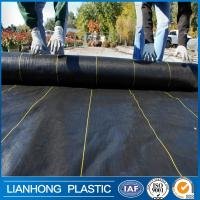 China China factory weed control ant grass fabric 5x100m ,Garden Ground Cover Fabric on sale
