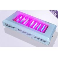 Wholesale 200W AC 85V - 264V RGB LED Grow Lights For Indoor Flower Garden from china suppliers
