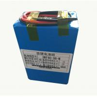 Wholesale 8000mah 9.6V Lithium Ion Battery For Farm Insecticidal Lamps from china suppliers