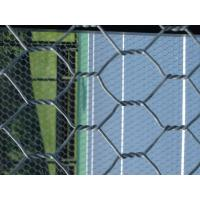 Quality Paddle / Platform Tennis Courts galvanised Wire Netting fence GAW for sale