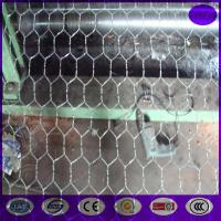 """Wholesale 72"""" x 150' ft 1"""" Mesh Galvanized Poultry Netting Chicken Wire Fence from china suppliers"""
